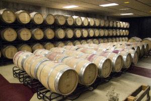 Piwiniczka w Fince de los Arandinos, La Rioja