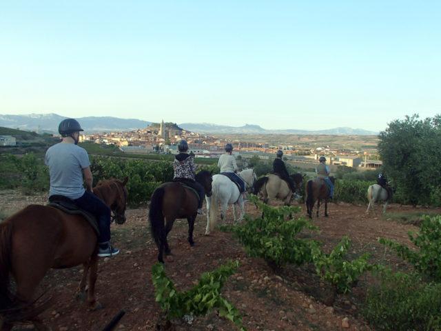 Przejażdżka konna po Rioja Alta