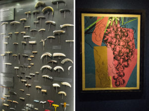 Kolekcja korkociągów, Muzeum Vivanco, Briones, La Rioja