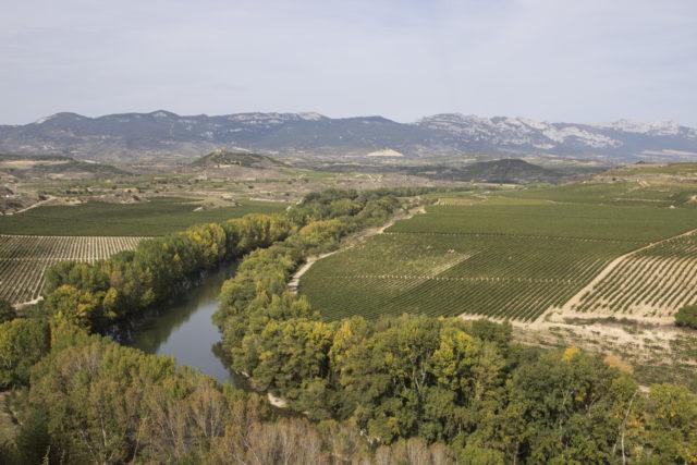 Rioja - widoki w Haro